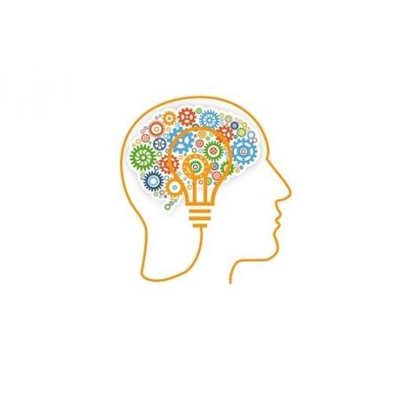 AP® Psychology (HST540)