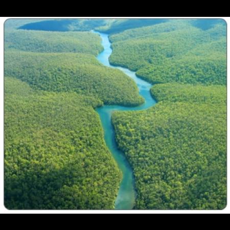 Summit Environmental Science (SCI010)